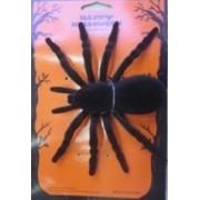 Spider18x13